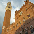 The Torre del Mangia. Siena (Tuscany, Italy) — Stock Photo #45704083