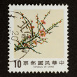CHINA - CIRCA 1980: Stamp printed in China — Stock Photo