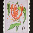 MALDIVES - CIRCA 1980: Stamp printed in the Maldives — Stock Photo #12500455