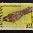 SURINAME - CIRCA 1980: Stamp printed in Suriname - Stock Photo