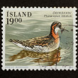 ICELAND - 1989: Stamp printed in Iceland — Stock Photo