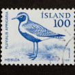 ICELAND - 1981: Stamp printed in Iceland — Stock Photo