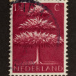 HOLLAND - CIRCA 1940: Stamp printed in the Netherlands — Stock Photo #12500848