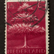 HOLLAND - CIRCA 1940: Stamp printed in the Netherlands - Стоковая фотография