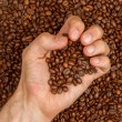 Coffee beans in hand — Stock Photo