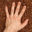 Coffee beans in hand — Stock Photo #12502127