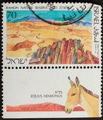 ISRAEL - 1988: Stamp printed in Israel — Stock Photo