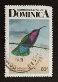 DOMINICA - 1968: Stamp printed in Dominica — Stock Photo
