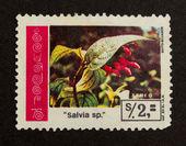 ECUADOR - CIRCA 1980: Stamp printed in Ecuador — Foto Stock
