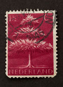 HOLLAND - CIRCA 1940: Stamp printed in the Netherlands — Stock Photo