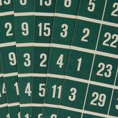 зеленый бинго карты — Стоковое фото