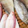 Close up of lovely fresh fish in a wet market — Stock Photo