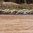 Dike made from sandbags — Stock Photo