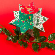 Butcher's broom and christmas decoration, isolated — Stock fotografie
