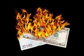 Burning money — Stock Photo