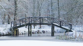 Wooden bridge covered in snow — Stock Photo