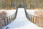 Metal bridge covered in snow — Stock Photo