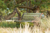 Old steel bench in the dutch nature — Stock Photo