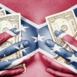 Sweaty girl covered her breast with money, confederate flag — Stock Photo