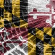 Stock Photo: Broken glass or ice with flag, Maryland