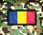 Amy camouflage uniform, Romania — Stock Photo