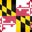 Linen flag of the US state of Maryland - Stock Photo