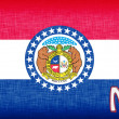 Stock Photo: Linen flag of US state of Missouri