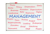 Management word cloud — Stock Photo