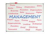 Management word cloud — Stock Photo