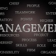 Management word cloud — Stock Photo #33318995