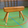Stock Photo: Pommel horse
