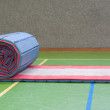 Stock Photo: Very old long mat on a green court