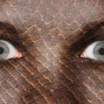 Постер, плакат: Women eye close up