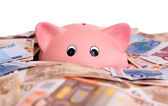 Unique pink ceramic piggy bank drowning in money — Stock Photo