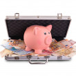 Metal briefcase full of cash — Stock Photo #41085937