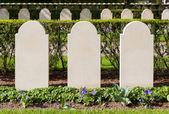 Rows of tombstones — Stock Photo