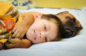 Puppy bullmastiff with boy — Stock Photo