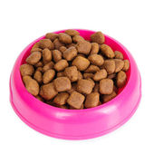Dog food in bowl isolated on white — Fotografia Stock