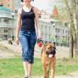 Woman and dog bullmastiff — Stock Photo #25183915