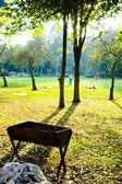 公園でバーベキュー — ストック写真
