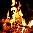 Flames of campfire — Stock Photo
