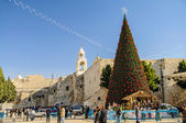 Nativity church, Bethlehem, Palestine, — Stock Photo