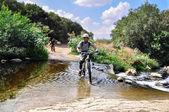 在自行车道上骑自行车者 — 图库照片