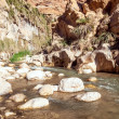 Wadi Hasa creek in Jordan — Stock Photo