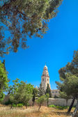 生神女就寝修道院、エルサレム — ストック写真