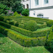 Landscaped bushes — Stock Photo