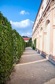 Peacock gardens of Wallenstein Palace — Stock Photo