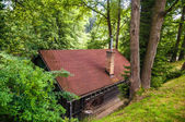 House in woods — Stock Photo