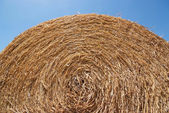 Round bale of straw with blue sky — Stock Photo