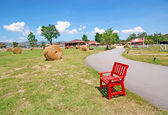 Red wooden chair on the park — Stok fotoğraf